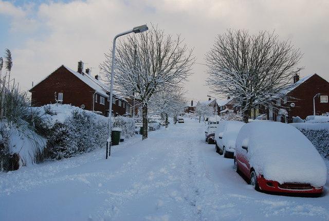 Snow bound, Chestnut Av.