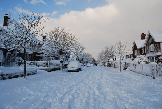 Chestnut Avenue - snowscene