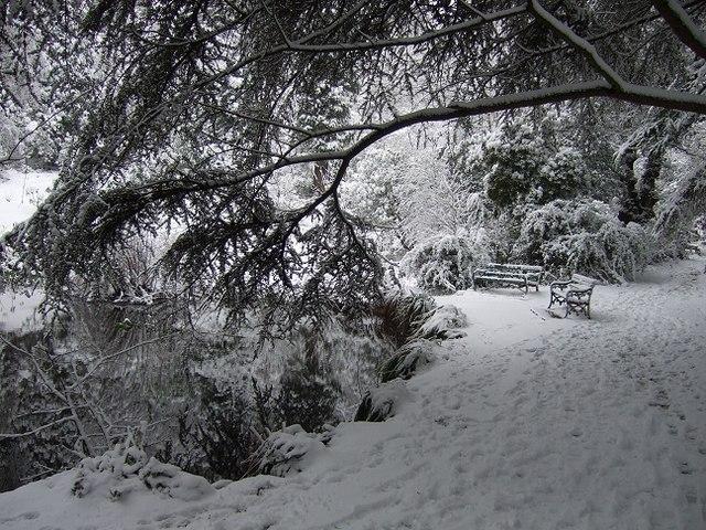 Parc Cefn Onn Pond