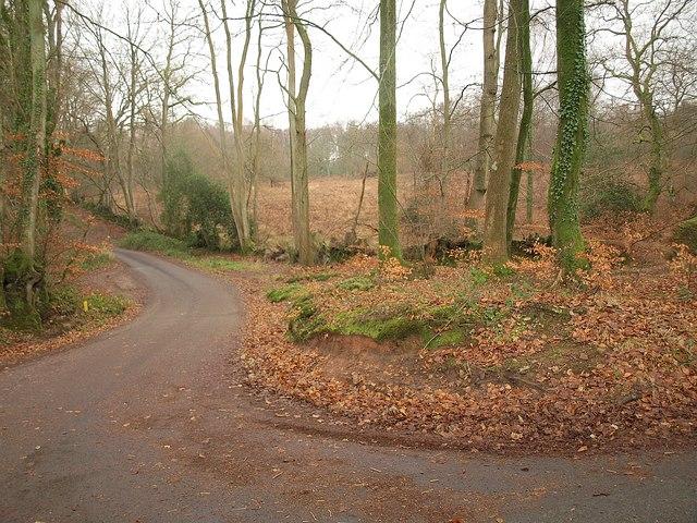 Last bend for a kilometre
