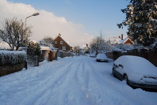 Snow, Chestnut Avenue