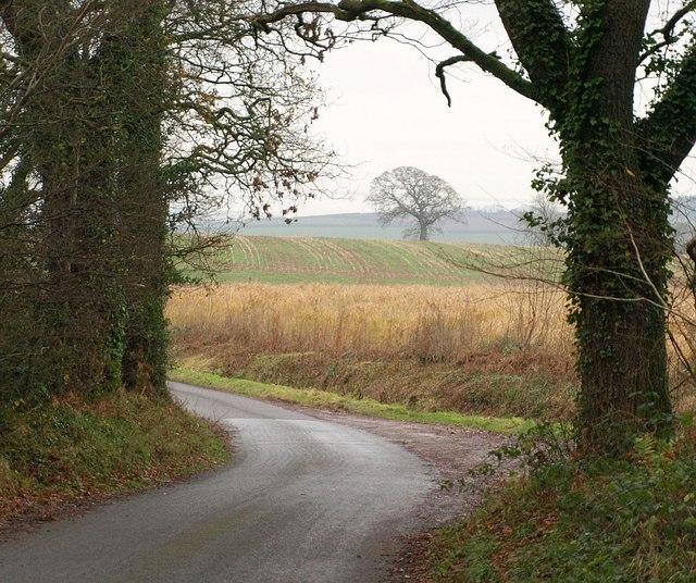 Lane to Dean's Cross
