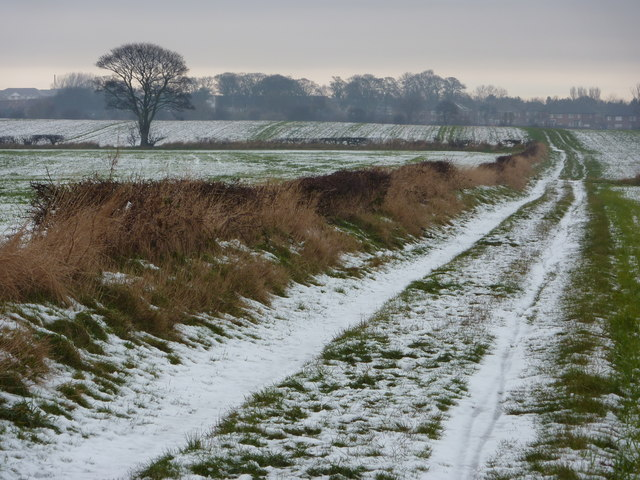 East Cramlington Public Path