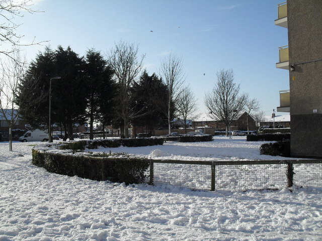 A snowy garden outside Chichester House