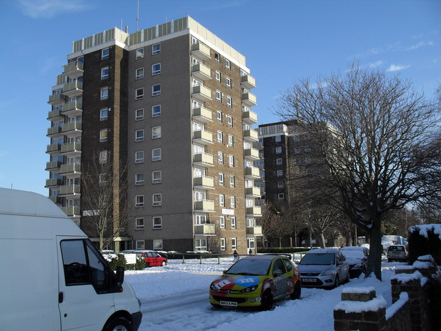January in Lockersley Road