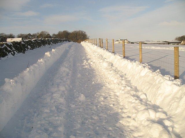 Farm road, Woodheads
