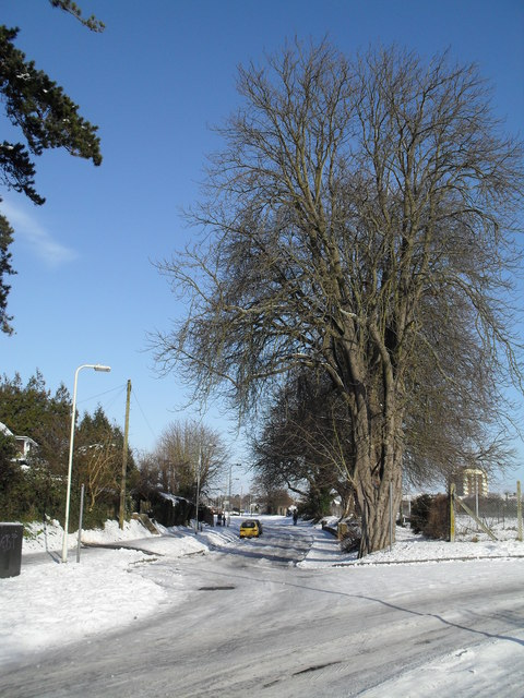 Treacherous conditions at the junction of Leigh Road and Lavant Drive