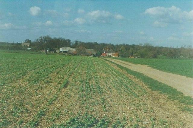 Olives Farm near Hunsdonbury in 1997