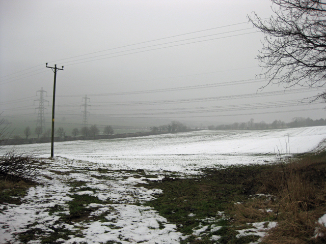 Near Horkstow - January
