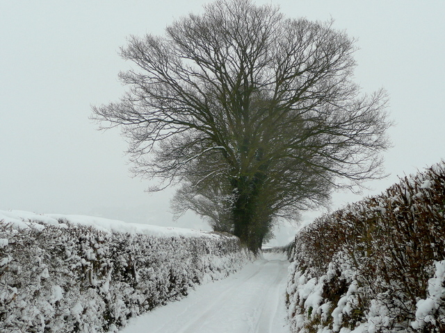 Pinford Lane in snow 1