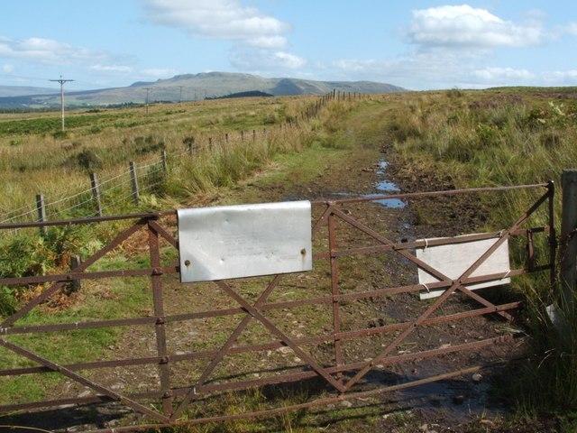 Rhyming gate