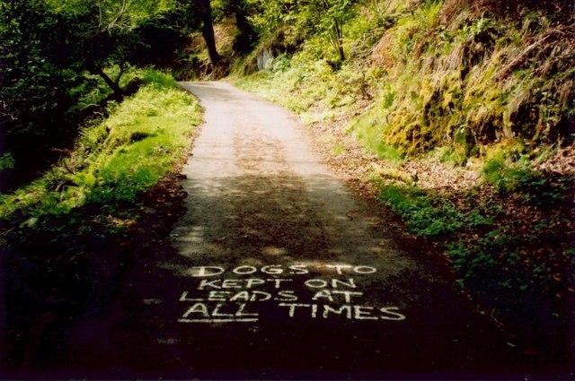 Signwriting on the road to Rhôs