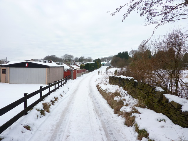 Snow bound road to Stone Hill Nurseries