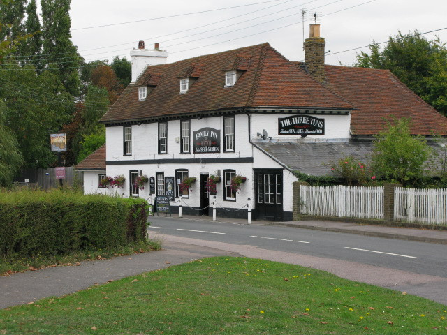 The Three Tuns pub from The Green