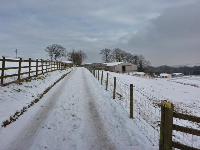 Road to Bury's Tenement