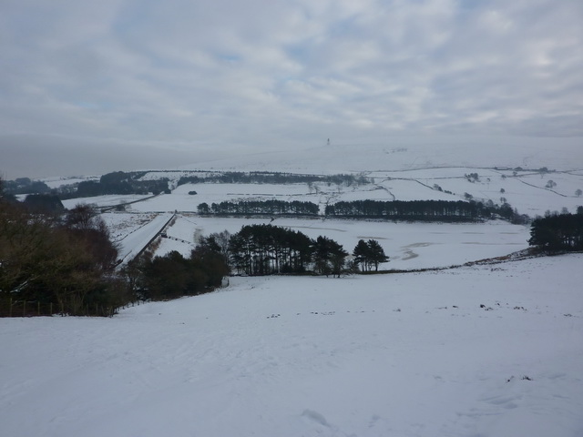 View towards Earnsdale Reservoirs