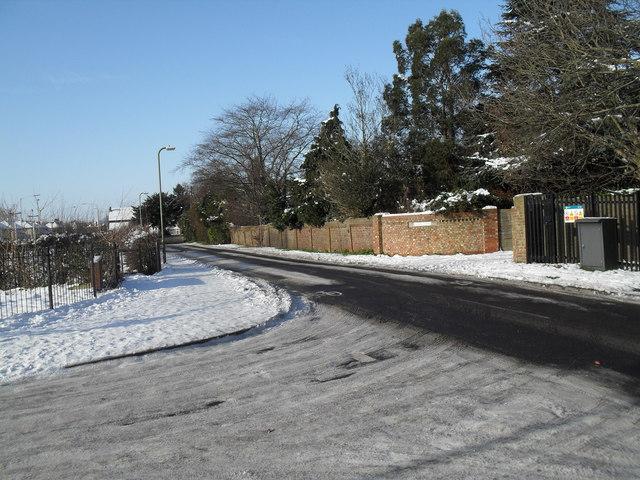 Looking from an icy Centenary Gardens across Eastern Road towards Riverside Gardens
