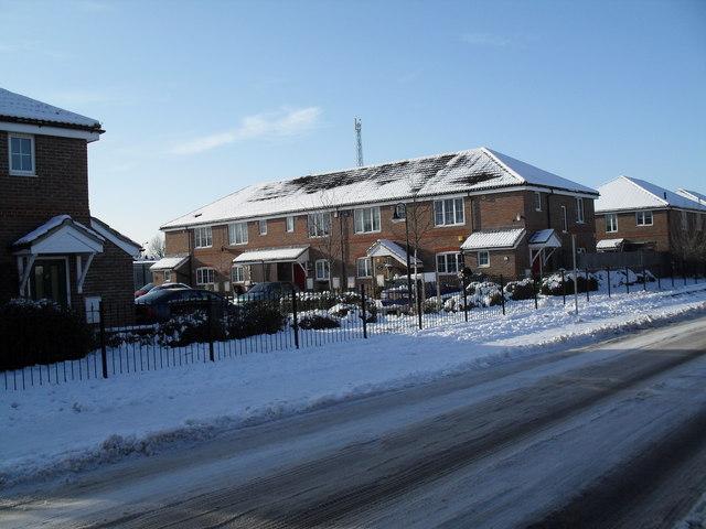 Looking across Eastern Road towards a snowy Centenary Gardens