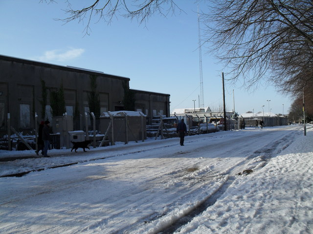 Walking the dog in a snowy Eastern Road