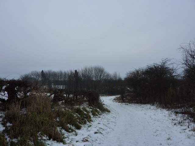 Public Footpath from East Cramlington
