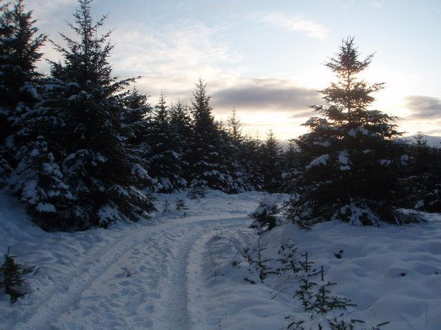 Snow covers the track to Benniguinea