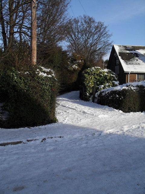 A snowy driveway in Third Avenue