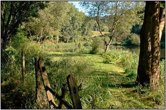 Toadsmoor woods and lake