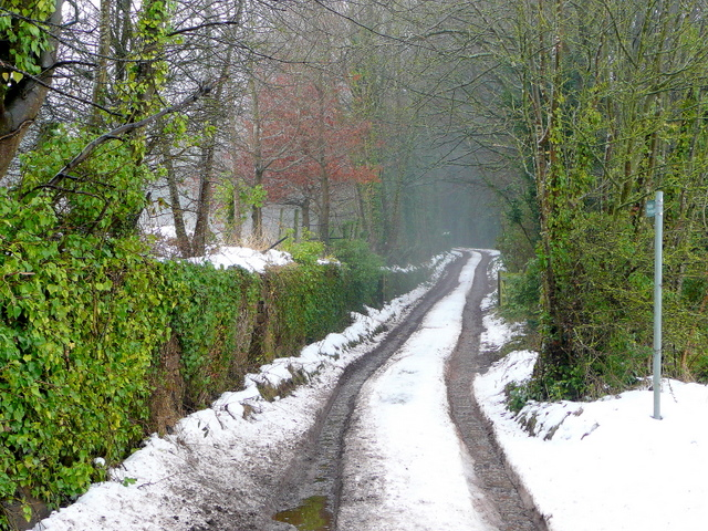 Track and footpath to Taynton House