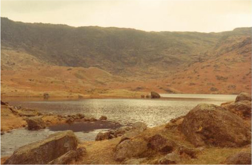Easedale Tarn from near the outflow
