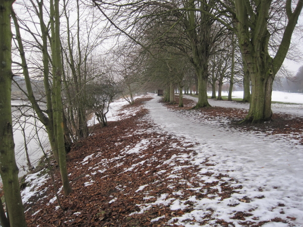 Frozen Path on Tyne Green
