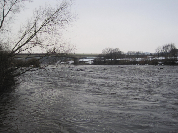 River Tyne near the A69 Road Bridge