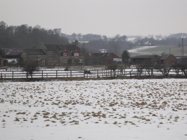 Kingshaw Haugh Farm
