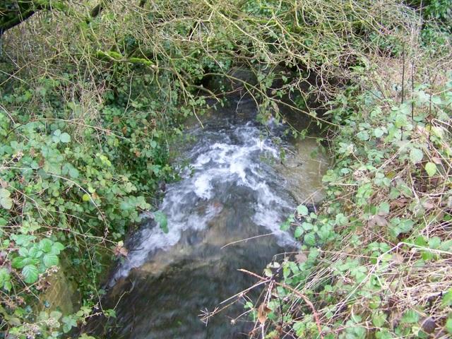 Rushing waters, Rockbourne