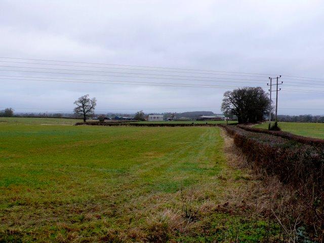 Countryside near Yeovil marsh