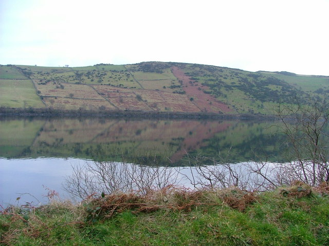Lough Island Reavy