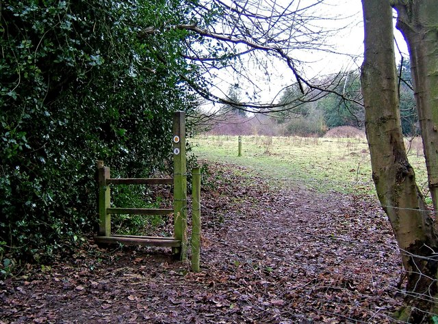 Public footpath in Eymore Wood