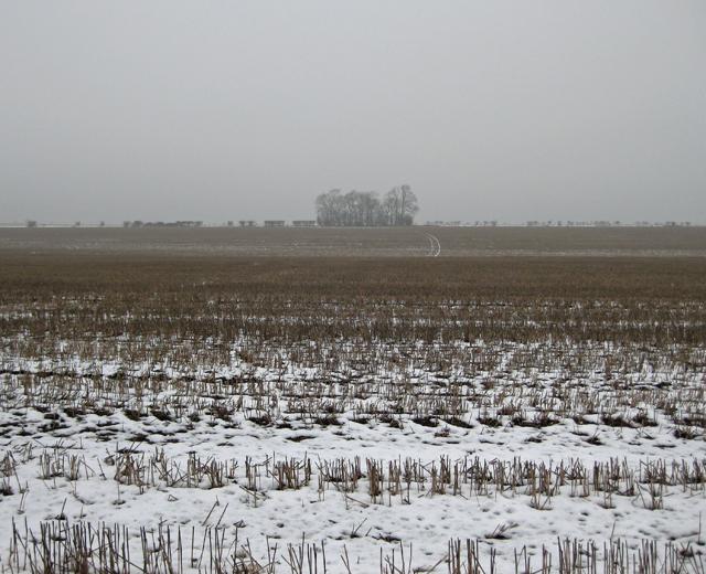 Snowy Stubble Field near North Wold Farm