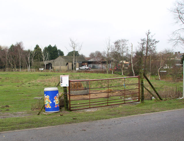 Gate into pasture west of Station Road North