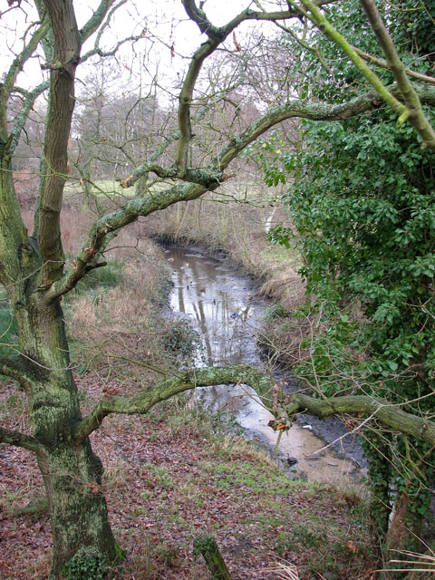 Drain on the eastern edge of Alder Carr