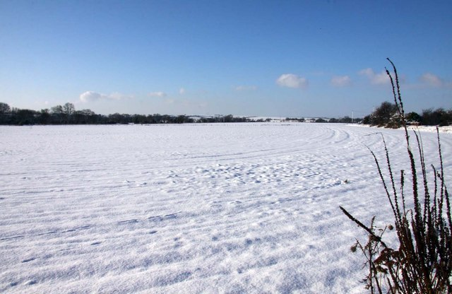 Snow covered field at Tadley