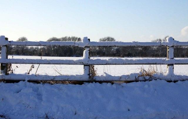 Snow laden fence