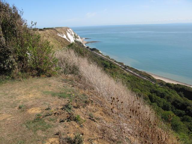 View along cliffs at Capel-le-ferne
