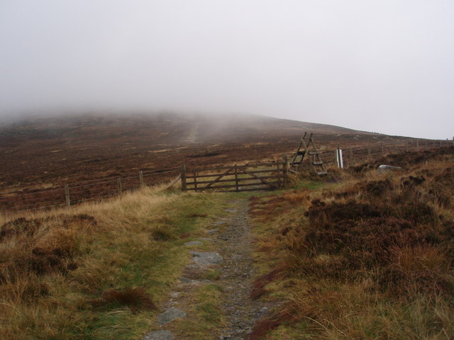 Ladder stile provides access to the upper reaches of Cairnsmore of Fleet