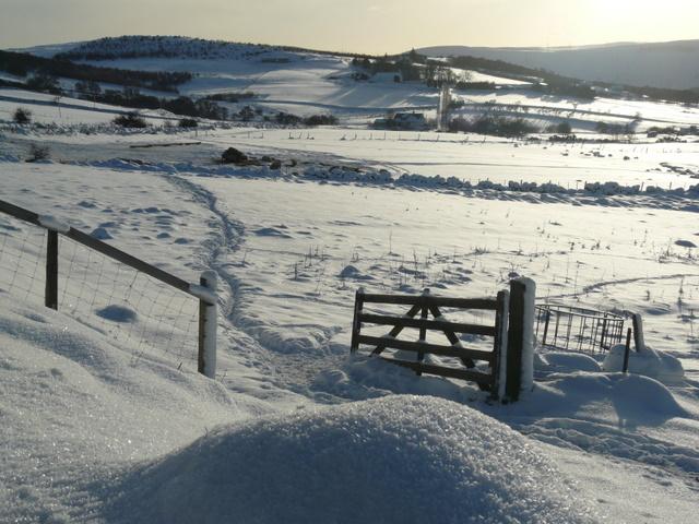 Gate near Balclaggan