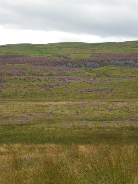 Heather moorland and dry stone wall