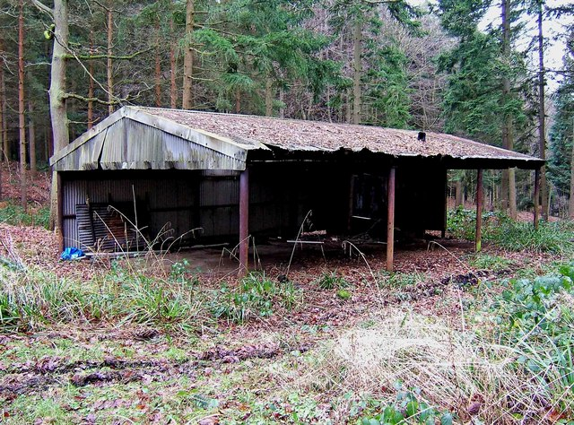 Old shed in Eymore Wood