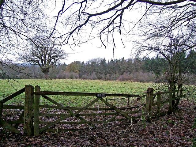 Field by Eymore Wood