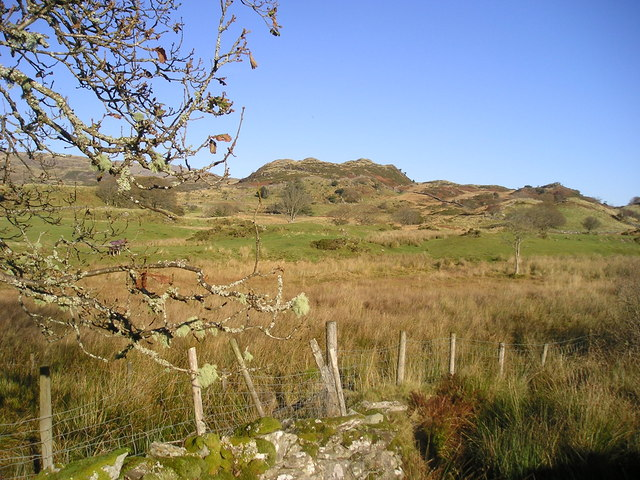 Snowdonia: bog and hill country