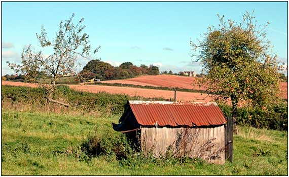 Barn near Raglan