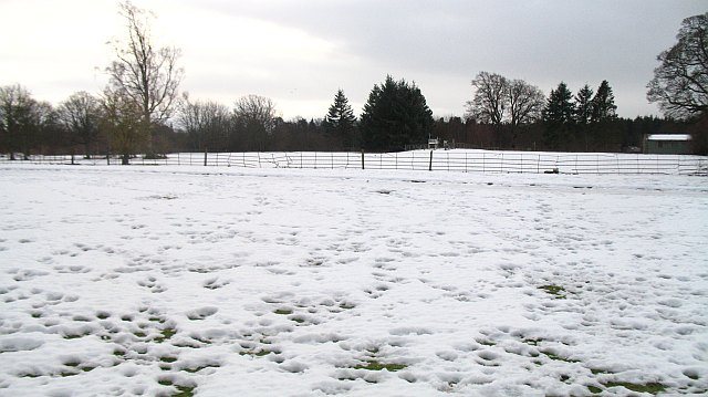 Snow covered parkland, Bush House